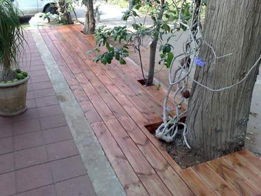 אורי גיל בניה בעץ  2