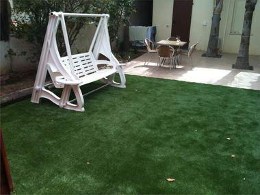 דשא דשא 1