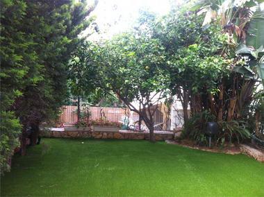 דשא דשא 10