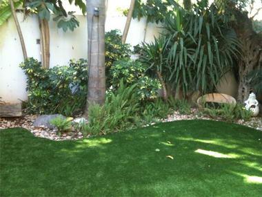 דשא דשא 5