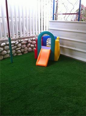 דשא דשא 8