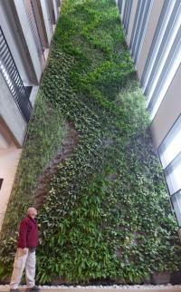 קירות ירוקים - ריצ'ארד רוזנבאום 14