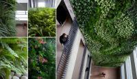 קירות ירוקים - ריצ'ארד רוזנבאום 16