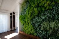 קירות ירוקים - ריצ'ארד רוזנבאום 19