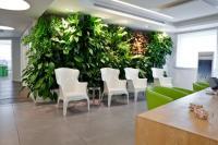 קירות ירוקים - ריצ'ארד רוזנבאום 2