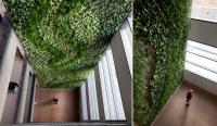 קירות ירוקים - ריצ'ארד רוזנבאום 3