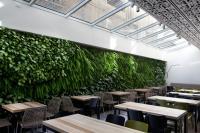 קירות ירוקים - ריצ'ארד רוזנבאום 9
