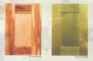 עץ ירוק - דלתות מעוצבות 11