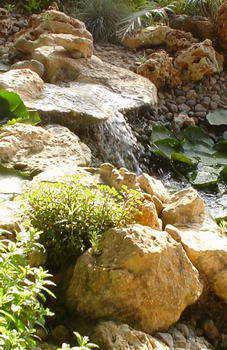 מים שקטים - בריכות נוי ומפלים 11