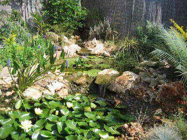 מים שקטים - בריכות נוי ומפלים 6