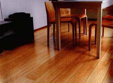 שטיחי ישראל - פרקטים ושטיחים 4