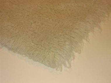 שטיחי ישראל - פרקטים ושטיחים 5