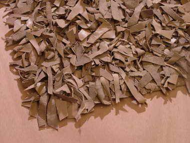 איתמר - שטיחים 14