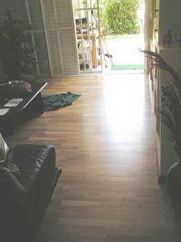 גרין לייבל - חיפוי רצפה 14