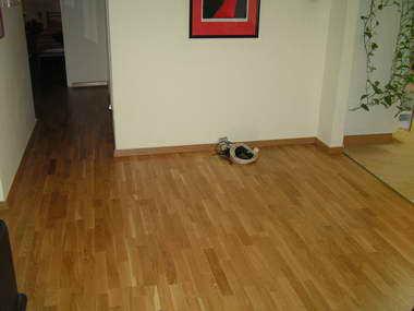 גרין לייבל - חיפוי רצפה 16