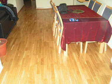 גרין לייבל - חיפוי רצפה 17