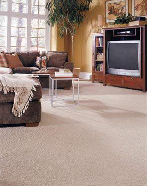שטיחי שאגי 1