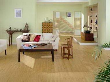 שטיחי שאגי 12