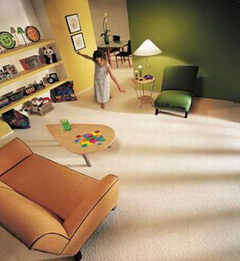 שטיחי שאגי 17