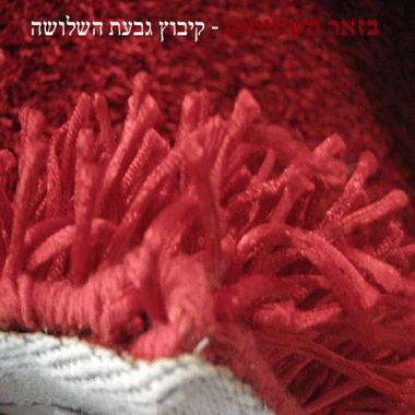 שטיחי שאגי 5