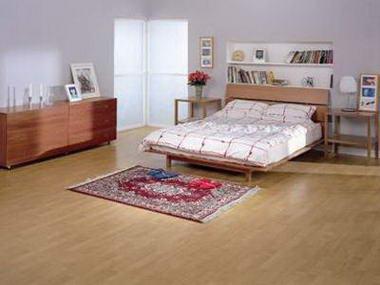 שטיחי שאגי 9