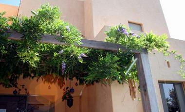 פסטורליה אדריכלות נוף ועיצוב גינות 16