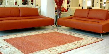 מתריב שטיחים 1