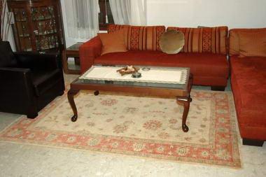 מתריב שטיחים 11
