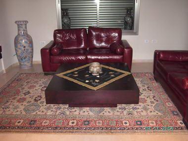 מתריב שטיחים 17