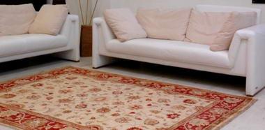 מתריב שטיחים 2