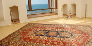 מתריב שטיחים 4