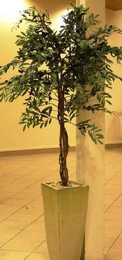 דקו-אין Deco-In עיצוב בצמחייה 10