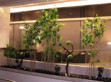 דקו-אין Deco-In עיצוב בצמחייה 3