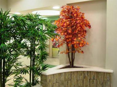 דקו-אין Deco-In עיצוב בצמחייה 5