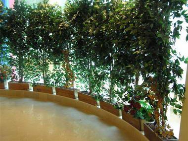 דקו-אין Deco-In עיצוב בצמחייה 8
