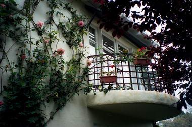 עלים ופרחים, תכנון גינות 3