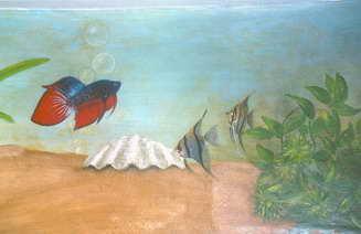 ים הצבע 18