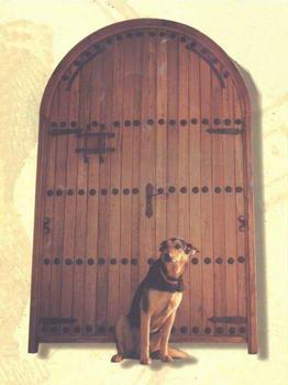 מערכות יוקרה - דלתות 2