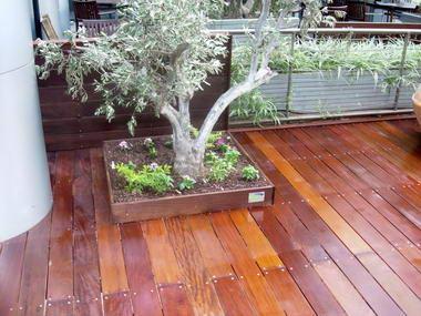עץ ועצה - המרכז לעץ מלא 17