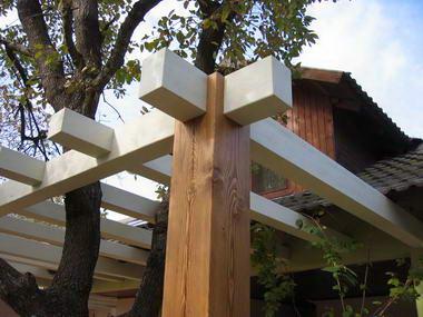 עץ ועצה - המרכז לעץ מלא 20