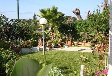 דשא עוז דשא סינטטי 8