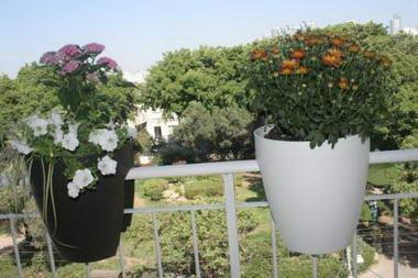 גרינבו - עציצים למרפסות 4