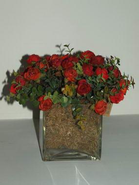 ורד מנור-גילהר יעוץ פנג שואי 18